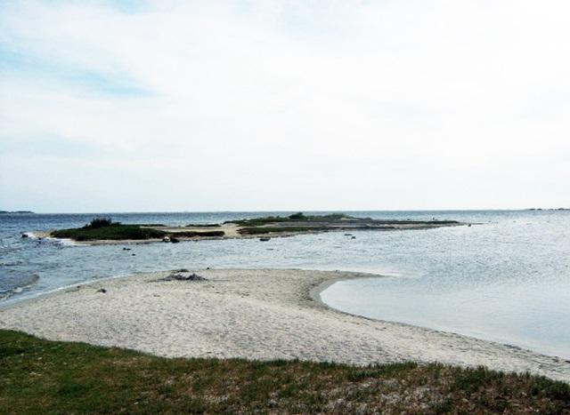 Ilha de Chico Mendes