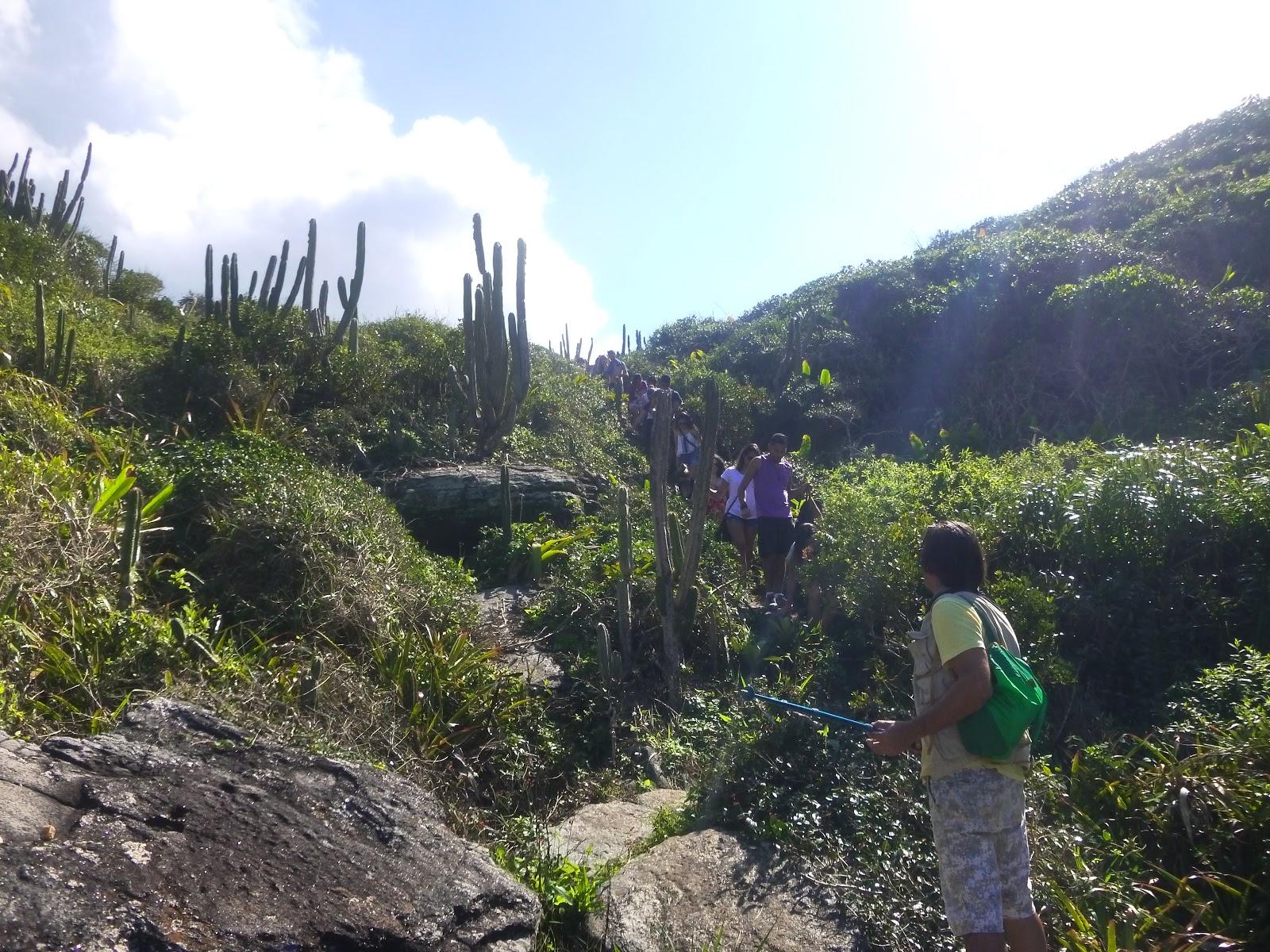 Reserva Pau Brasil