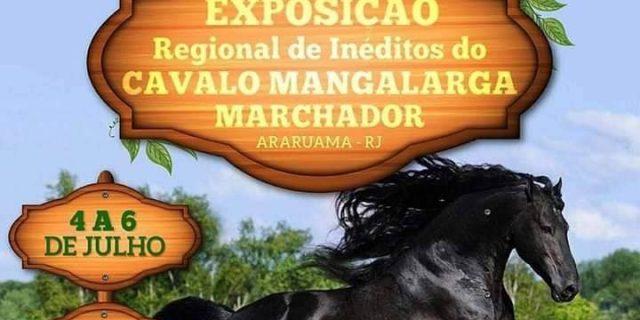 IV Exposição Regional de Inéditos do Cavalo Mangalarga Marchador