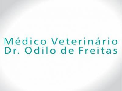Dr. Odilo de Freitas